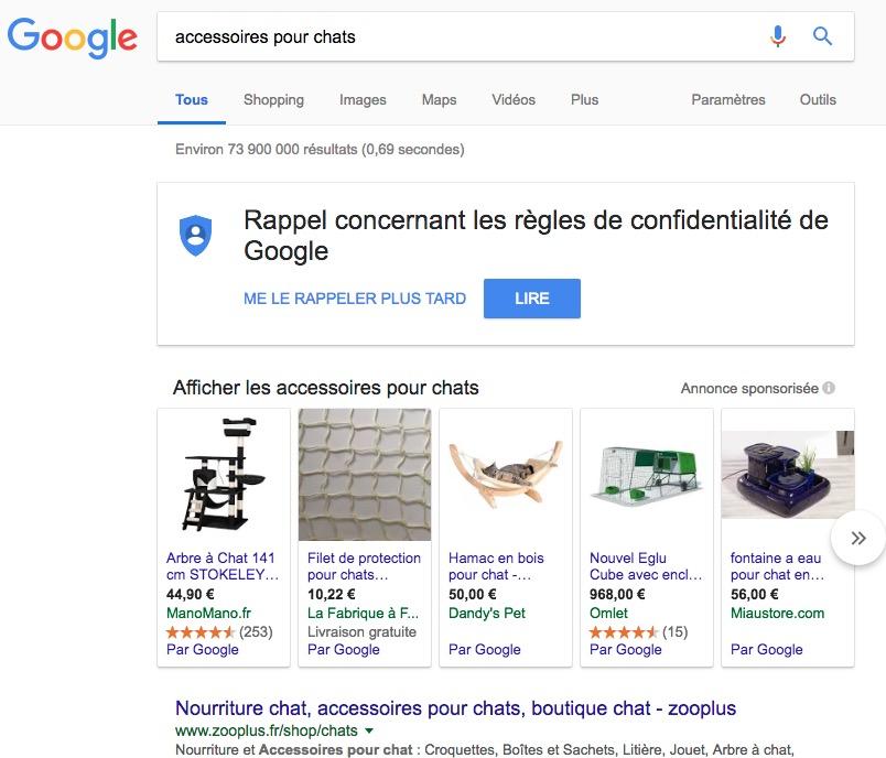 niche dropshipping Google